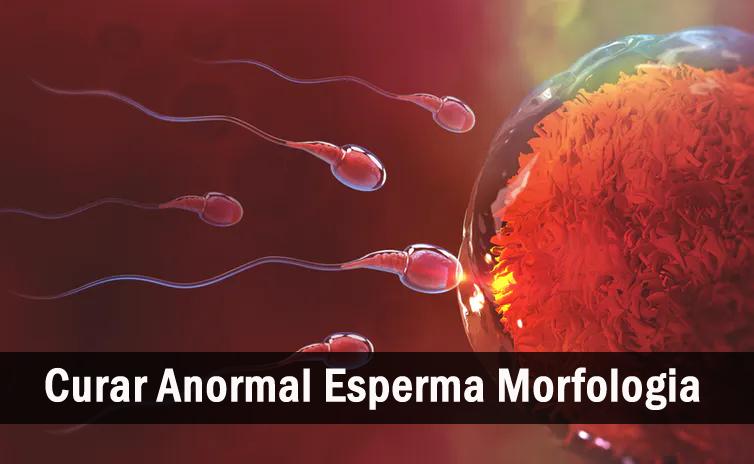 Cura Anormal Esperma Morfologia