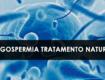 Oligospermia Tratamento natural