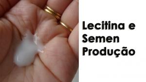 Lecitina e Semen Produção - Guia Completo para aumentar Ejaculate Volume