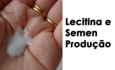 Lecitina e Semen Produção